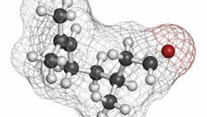薄毛に有効な育毛剤成分② FGF-5阻害剤の効果